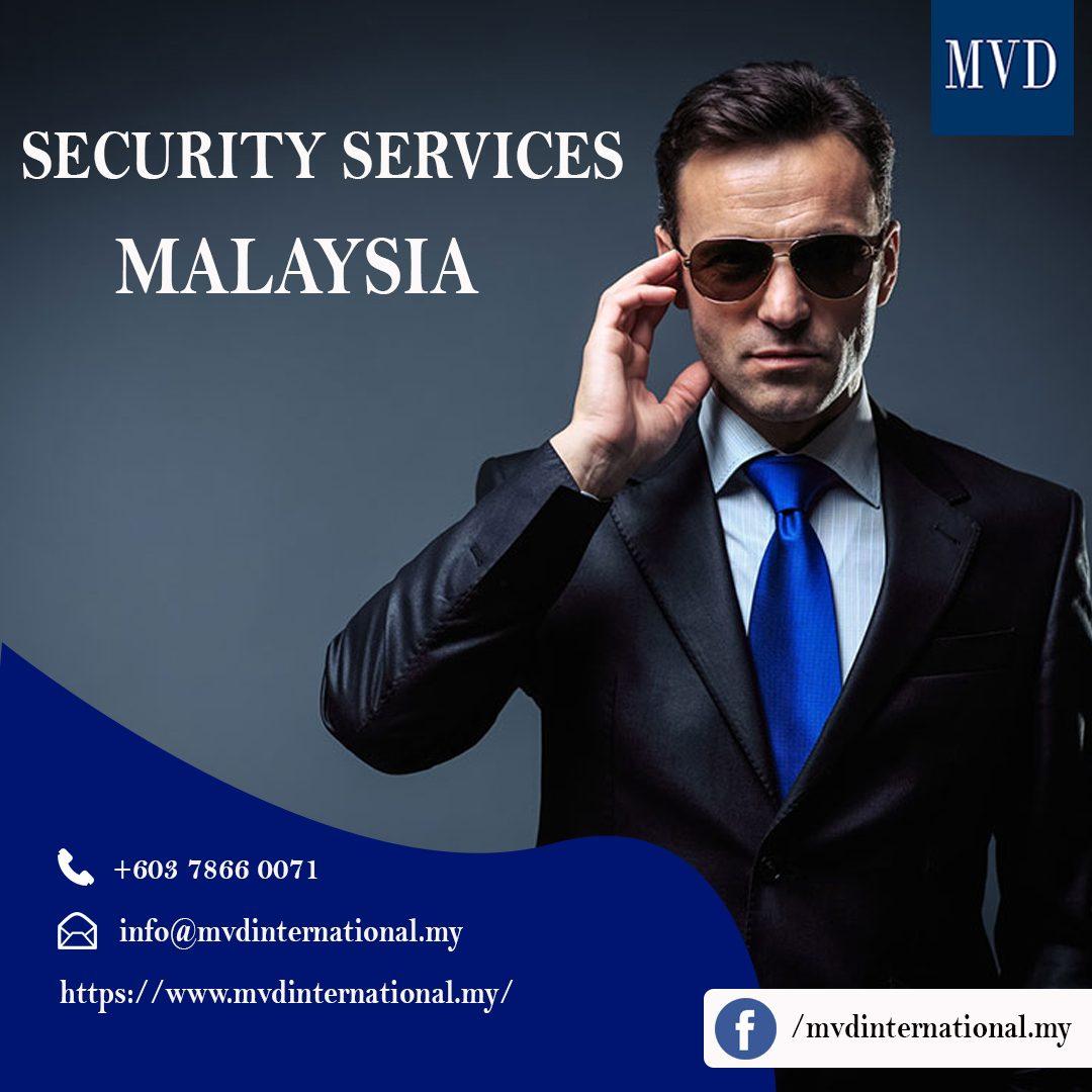 MVD International